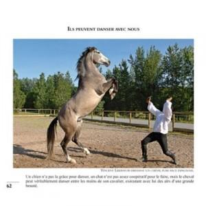 99-photos-pour-aimer-les-chevaux-4