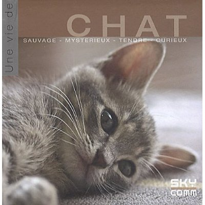 une-vie-de-chat