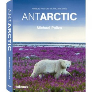 antartic